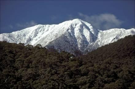 http://www.snowlife.com.au/wp-content/uploads/2010/06/Mt_buller_mountain.jpg